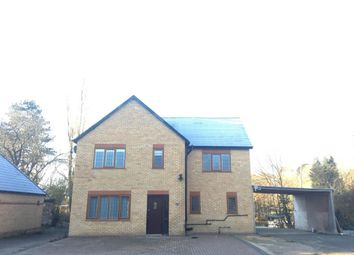 Thumbnail 5 bed detached house to rent in Ganwick, Barnet