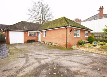 Thumbnail 3 bed detached bungalow for sale in Ackender Road, Alton, Hampshire