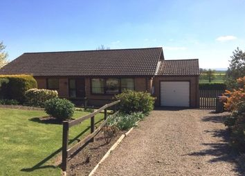 Thumbnail 3 bed bungalow to rent in Springwell, Ingleton, Darlington