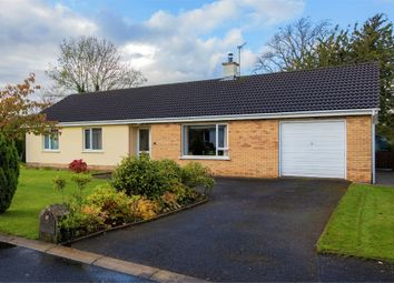 Thumbnail 3 bed detached bungalow for sale in Fortview Park, Rosscolban, Kesh, Enniskillen, County Fermanagh