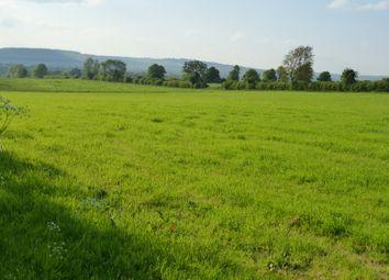 Thumbnail Property for sale in Desart Orchard, Cuffesgrange, Kilkenny