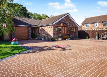 Thumbnail 3 bed detached bungalow for sale in Woodapple Court, Stallingborough