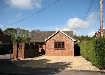 Thumbnail 3 bed detached bungalow for sale in Back Lane, Bucks Horn Oak, Farnham