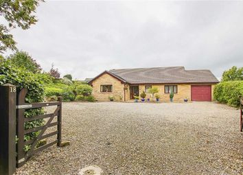 Thumbnail 3 bed detached bungalow for sale in Lyndale Road, Hapton, Lancashire