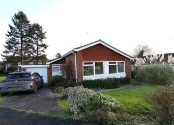 Thumbnail 3 bed bungalow to rent in Maes Y Foel, Winllan Road, Llansantffraid