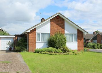 Thumbnail 2 bedroom detached bungalow to rent in Bramble Hill, Alresford