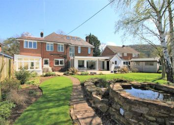 Thumbnail 4 bed detached house for sale in Walford Road, Ross-On-Wye