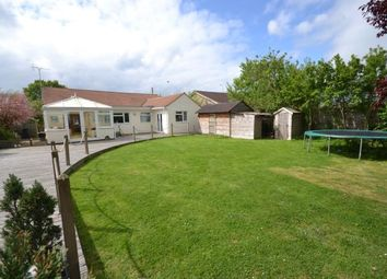 Thumbnail 4 bed bungalow for sale in Mayland, Chelmsford, Essex