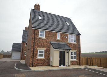 Thumbnail 5 bed detached house to rent in Thill Stone Mews, Whitburn, Sunderland, Tyne And Wear