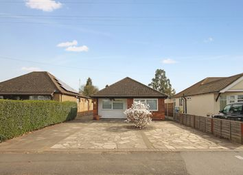 Thumbnail 3 bed detached bungalow for sale in Whiteheather, Nevendon Road, Basildon