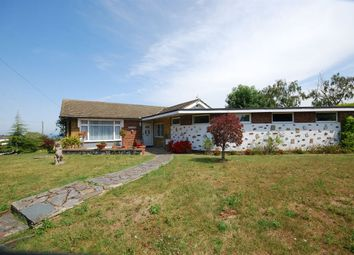 Thumbnail 4 bed detached bungalow for sale in Clovelly Road, Seasalter, Whitstable
