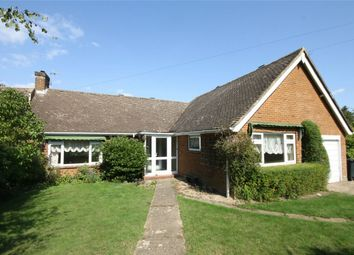 Thumbnail 4 bed detached bungalow for sale in The Grove, Bexhill-On-Sea