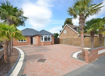 Thumbnail 4 bed bungalow for sale in Blackmoor Wood, Ascot, Berkshire