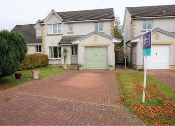 Thumbnail 4 bed detached house to rent in Dryburn Park, West Linton