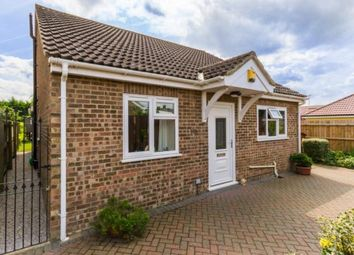 Thumbnail 3 bedroom bungalow for sale in Waterbeach, Cambridge