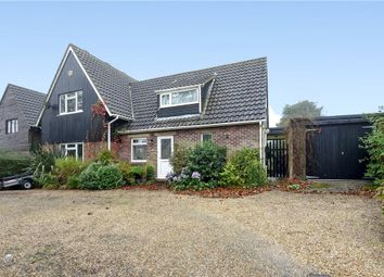 Thumbnail 3 bed detached house for sale in New Close, Milton Abbas, Blandford Forum