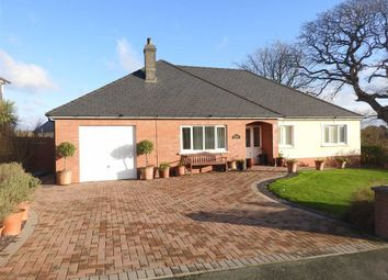 Thumbnail 4 bed detached bungalow for sale in Maesydderwen, Cardigan