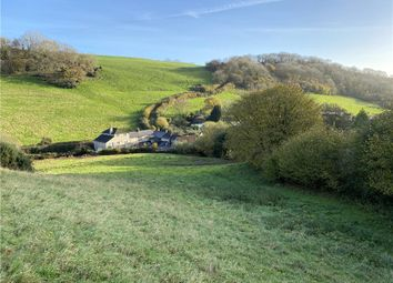 Thumbnail Equestrian property for sale in Berry Hill, Branscombe, Seaton, Devon
