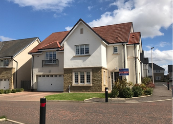 Thumbnail 5 bed detached house for sale in Young Crescent, Larbert