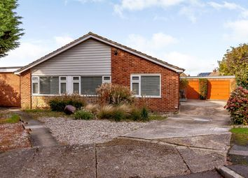 Thumbnail 4 bed detached bungalow for sale in Juniper Close, Whitstable