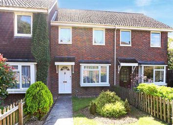 Thumbnail 2 bed terraced house to rent in Dickenson Walk, Alresford
