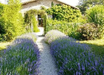 Thumbnail 3 bed equestrian property for sale in 86460 Mauprévoir, France
