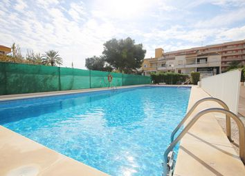 Thumbnail 3 bed penthouse for sale in Calle Pleamar 03185, Torrevieja, Alicante