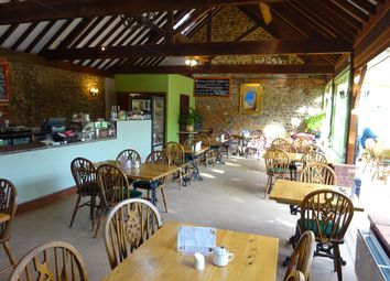 Thumbnail Restaurant/cafe to let in Thorpe Market Rd, Roughton, Norwich