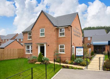 "Thumbnail 4 bed detached house for sale in ""Mitchell"" at Craneshaugh Close, Hexham"