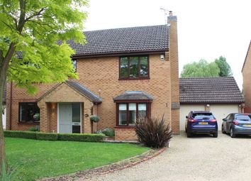Thumbnail 4 bed detached house for sale in Althorpe Close, Market Deeping