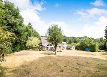Thumbnail 4 bed bungalow for sale in Lightwater, Surrey