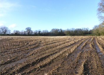 Thumbnail Land for sale in Cotleigh, Honiton, Devon