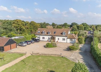Epping Road, Roydon, Essex CM19. 5 bed detached house