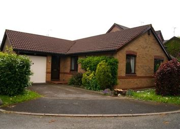 Thumbnail 3 bed bungalow to rent in Foxes Walk, Higher Kinnerton, Flintshire