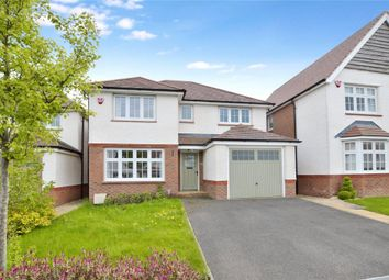 Thumbnail 4 bed detached house to rent in Clover Way, Newton Abbot, Devon