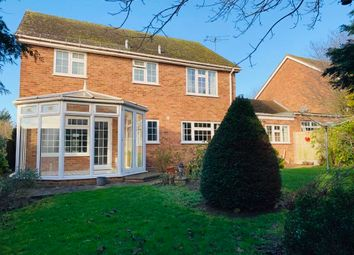 Thumbnail 4 bed property to rent in Patching Hall Lane, Broomfield, Chelmsford