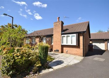 Thumbnail 3 bed bungalow for sale in Epsom Croft, Anderton, Chorley