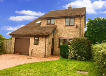 Thumbnail 4 bed detached house to rent in Brambling Drive, Thornhill, Cardiff