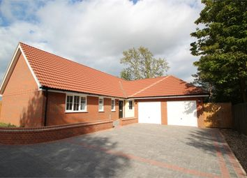 Thumbnail 4 bed detached bungalow for sale in Ipswich Road, Brantham, Manningtree, Suffolk