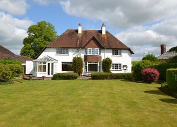 Thumbnail 4 bed detached house to rent in Blundells Road, Tiverton