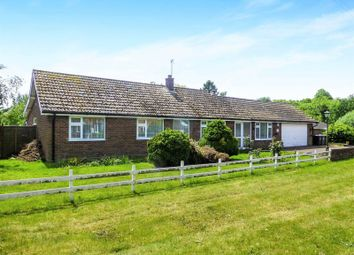 Thumbnail 4 bed detached bungalow for sale in The Street, Dilham, North Walsham