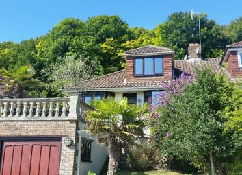 Thumbnail 3 bed bungalow for sale in Meadow Close, Rottingdean, Brighton