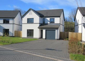 Thumbnail 4 bed detached house for sale in Moor Park, Cockermouth, Cumbria