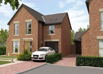 Thumbnail 4 bedroom detached house for sale in Holly Grove, Thorpe Willoughby, Selby