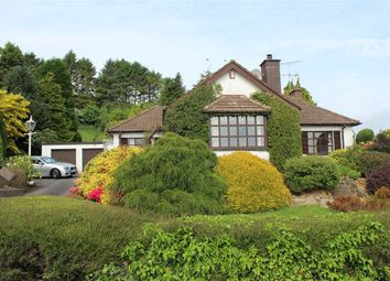 Thumbnail 3 bed bungalow for sale in 59 Newry Road, Poyntzpass