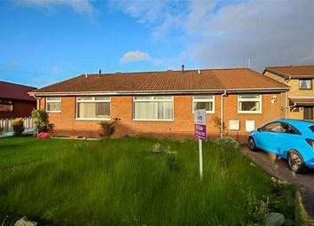 Thumbnail 3 bed bungalow to rent in Elm Park, Blackburn, Bathgate