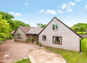 Thumbnail 3 bed detached bungalow for sale in Horsham Road, Capel, Dorking, Surrey