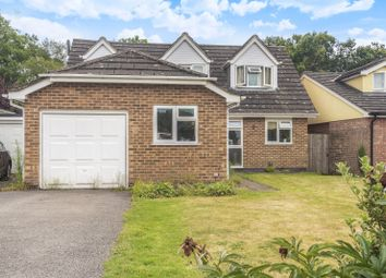 Thumbnail 4 bed detached house to rent in Forest Rise, Liss