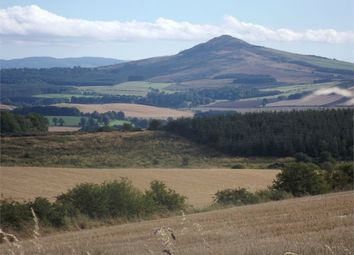 Thumbnail Land for sale in Residential Building Plot With Exceptional Views, Ancrum Craig, Ancrum, Jedburgh, Scottish Borders