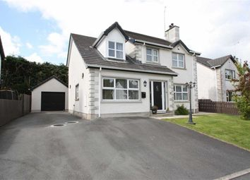 Thumbnail 4 bed detached house for sale in Carnglave Manor, Ballynahinch, Down